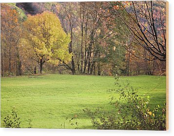 Wood Print featuring the photograph River Road Field by Tom Singleton