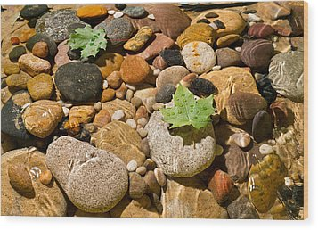 River Stones Wood Print by Steve Gadomski
