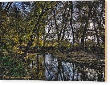 Rivers Edge Wood Print by Dan Crosby