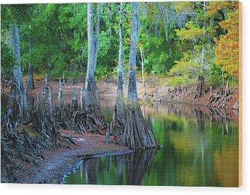 Riverside Wood Print by Bill Barber