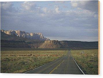 Road In Arizona Wood Print by David Edwards
