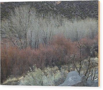 Road To Chimayo  Wood Print
