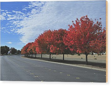 Road To Fall Colors Wood Print by Richard Leon