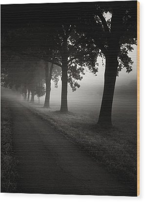 Road To Nowhere.... Wood Print by Jaromir Hron