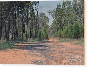 Road To Nowhere Wood Print by Joanne Kocwin