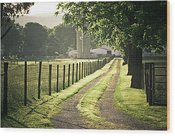 Road To The Farm Wood Print