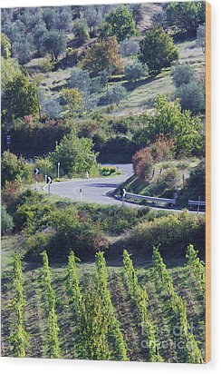 Road Winding Through Vineyard And Olive Trees Wood Print by Jeremy Woodhouse