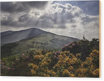 Roan Mountain Afternoon Wood Print by Rob Travis