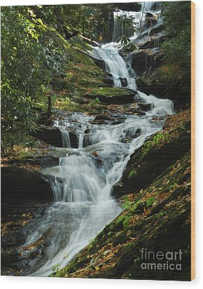 Wood Print featuring the photograph Roaring Fork Falls by Deborah Smith