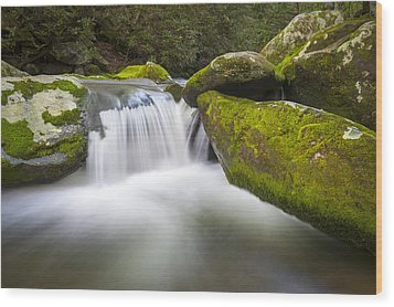 Roaring Fork Great Smoky Mountains National Park - The Simple Pleasures Wood Print by Dave Allen