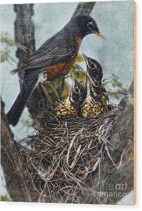 Robin And Babies In Nest Wood Print by Jill Battaglia