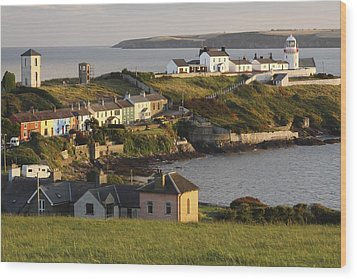 Roches Point Lighthouse In Cork Harbour Wood Print by Trish Punch