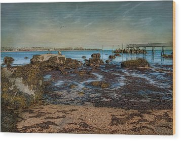 Rock Bottom Wood Print by Robin-Lee Vieira