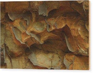 Rock Wood Print by Daniel Reed