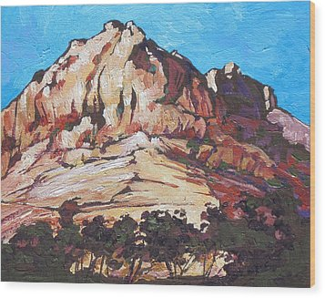Rock Face 2 Wood Print by Sandy Tracey