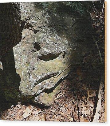 Rock Face Wood Print by Joel Deutsch
