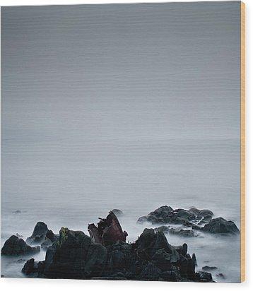 Rocks In Water At Sea Wood Print by Ahfox21
