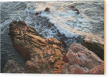 Wood Print featuring the photograph Rocky Coast In Warm Sun by Michael Rock