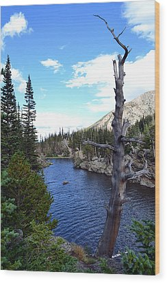 Wood Print featuring the photograph Rocky Mountain National Park1 by Zawhaus Photography