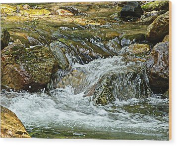 Wood Print featuring the photograph Rocky River by Lydia Holly