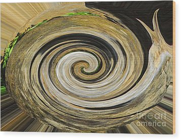 Rocky Road Wood Print by Cindy Manero