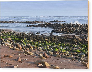 Rocky Shore Wood Print by Svetlana Sewell