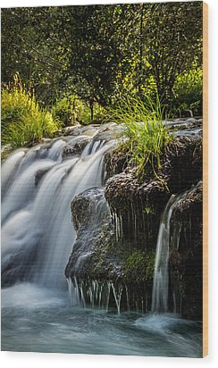 Wood Print featuring the photograph Rogue River by Randy Wood