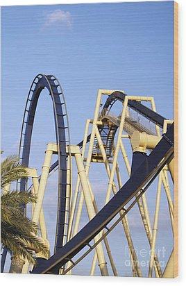 Roller Coaster Track Wood Print by Skip Nall