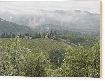 Rolling Green Hills, Wine And Olive Wood Print by Keenpress