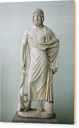 Roman Statue Of Asclepius Wood Print by Sheila Terry