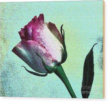 Romance Rose Wood Print by Marsha Heiken