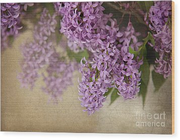 Romantic Lilac Wood Print by Cheryl Davis