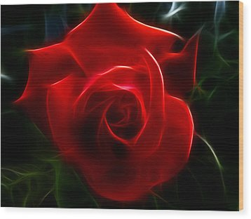 Romantic Red Rose Wood Print by Cindy Wright
