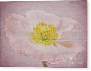 Romantico Wood Print by Angela Doelling AD DESIGN Photo and PhotoArt