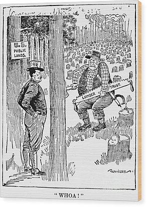 Roosevelt Cartoon, 1900s Wood Print by Granger