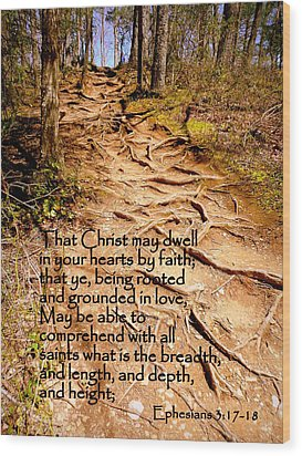 Rooted Path With Scripture Wood Print by Cindy Wright