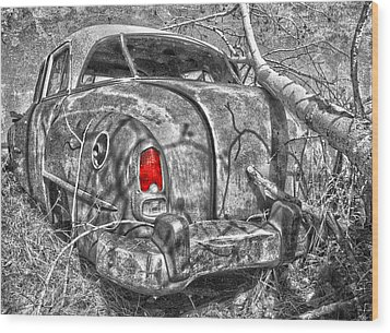 Roots Of A Journey  Wood Print by Jerry Cordeiro