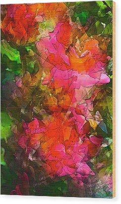 Rose 147 Wood Print by Pamela Cooper