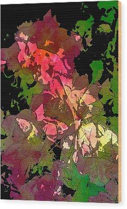 Rose 153 Wood Print by Pamela Cooper