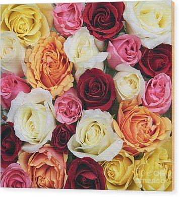 Rose Blossoms Wood Print by Elena Elisseeva