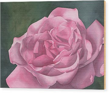 Rose Blush Wood Print by Leona Jones