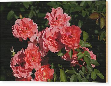 Rose Bouquet Wood Print by Bj Hodges