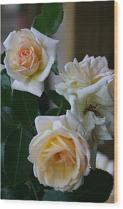 Rose Wood Print by Denise Moore