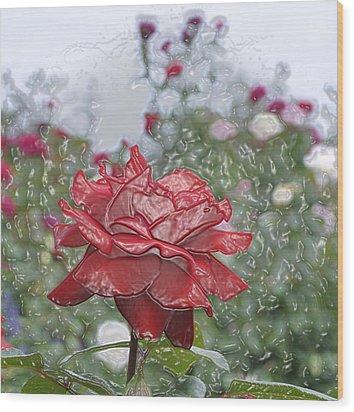 Rose Forever Wood Print by Vijay Sharon Govender