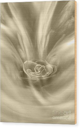 Wood Print featuring the digital art Rose From A Dream by Johnny Hildingsson