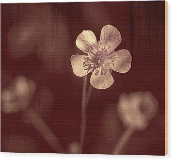 Rose Grain Wildflower Wood Print by Bill Tiepelman