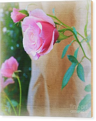 Rose In The Garden Wood Print by Patricia  Sanders