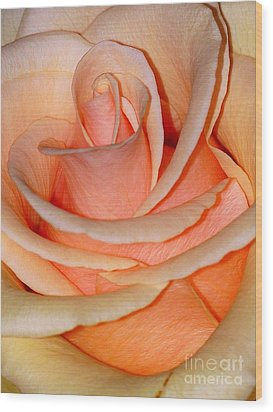 Wood Print featuring the photograph Rose by Sylvie Leandre
