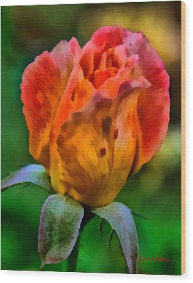 Rose Wood Print by Lynne Jenkins