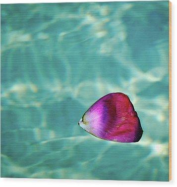 Rose Petal Floating On Water Wood Print by Gerard Plauche
